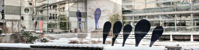 Frankfurt School gründet Blockchain Center: Universitärer Rahmen für disruptive Technologie